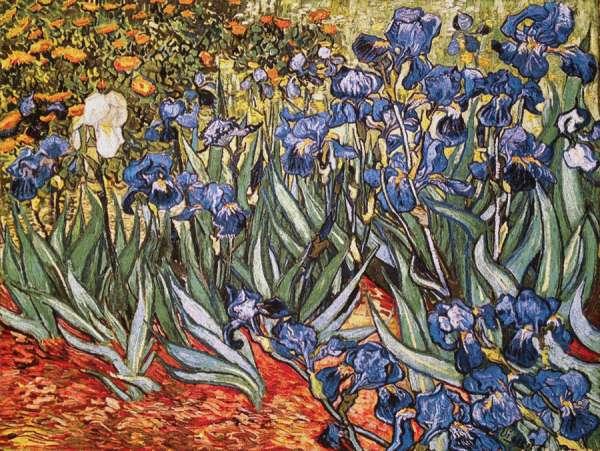 гобелен ирисы — картина  Винсента ван Гога
